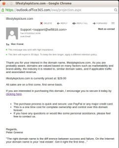 domain-sales1